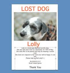 lost pet sign template