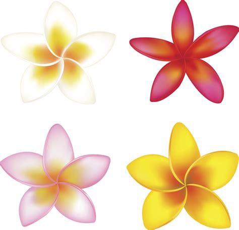 imagenes flores simples moldes de flores para imprimir vix
