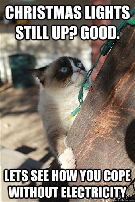 Merry Christmas Cat Meme - grumpy reminder it s january 30th fun memes