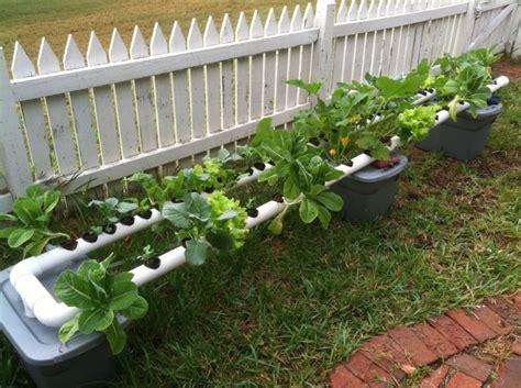 backyard hydroponic garden first backyard hydroponic system aquaponic gardening