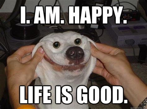 Life Is Great Meme - i am happy life is good misc quickmeme