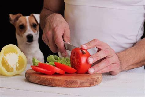 alimentazione vegetariana per cani animali vegani e vegetariani come acquistare i loro prodotti