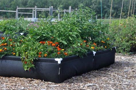 fabric raised garden beds up we grow winnipeg free press homes