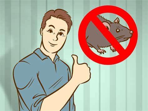 getting rid of a 4 ways to get rid of rats wikihow