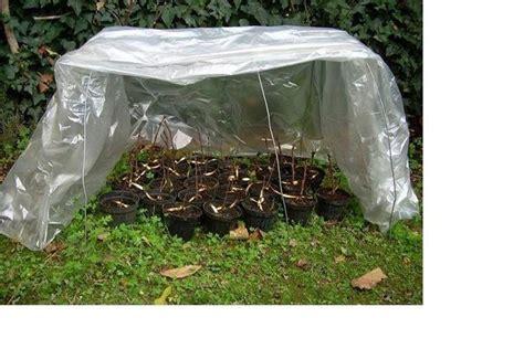 orto invernale in vaso orto invernale ortaggi come coltivare l orto in inverno