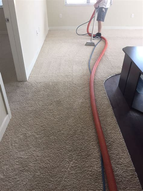 Rug Cleaning Raleigh Nc by Residential Carpet Cleaning Raleigh Nc Quality One