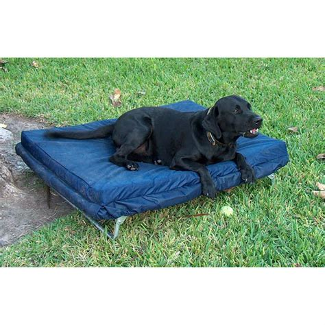 blantex 174 db 1 pet bed with mat 94789 air beds at sportsman s guide