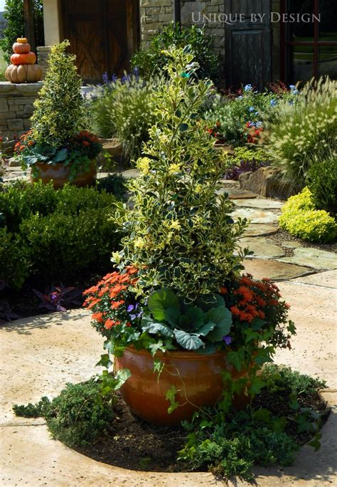 fall plants container gardening pinterest best 25 fall potted plants ideas on pinterest autumn