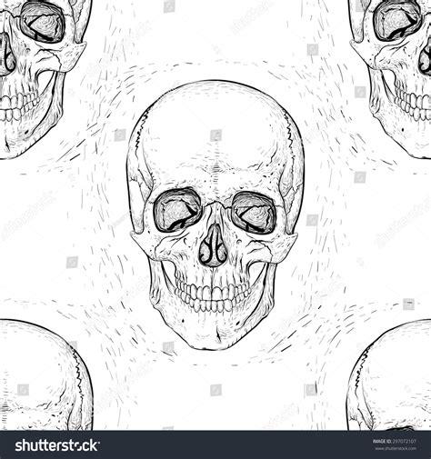 image human pattern scary human skulls pattern background stock vector
