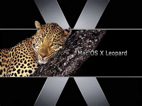 wallpaper mac leopard mac os x leopard wallpapers wallpaper cave