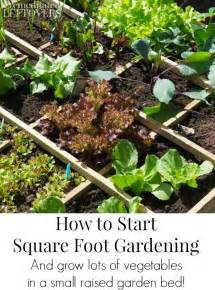 how to start a small garden in your backyard how to start square foot gardening