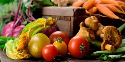 alimenti calorie negative cibi a calorie negative quali sono e perch 233 fanno dimagrire