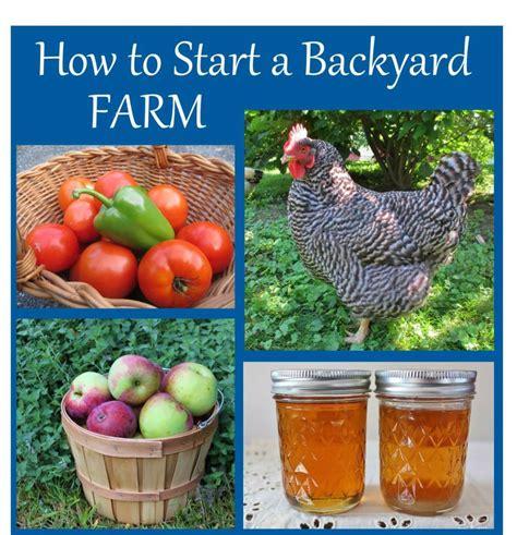 a backyard farm how to start a backyard farm