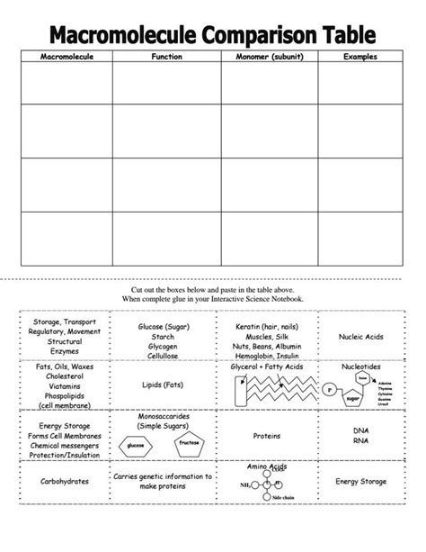carbohydrates 9th grade macromolecules chart activity science for secondary