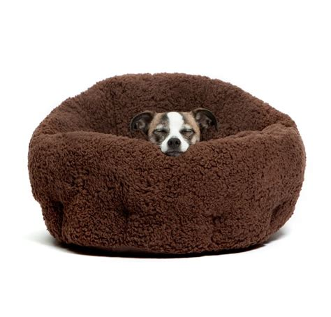 inexpensive dog beds the best cheap dog beds mytop10bestsellers