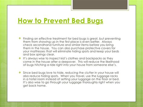 how to keep bed bugs off of you the truth about bed bugs
