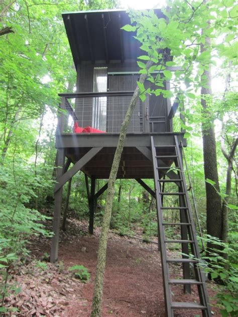 tree house plans on stilts tree house plans on stilts beautiful design tree house plans stilts best house design