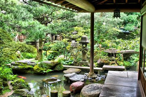 in house garden master garden plante ornamentale oradea master garden