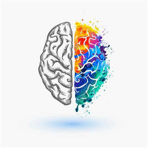 brain color left brain vs right brain wellness360 magazine