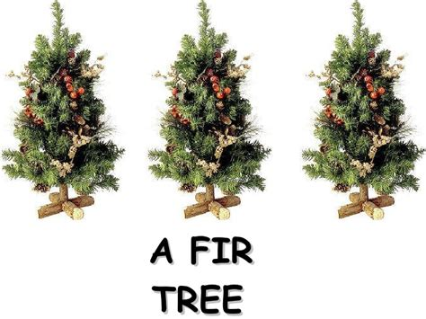 meaning behind christmas tree pictures to pin on pinterest