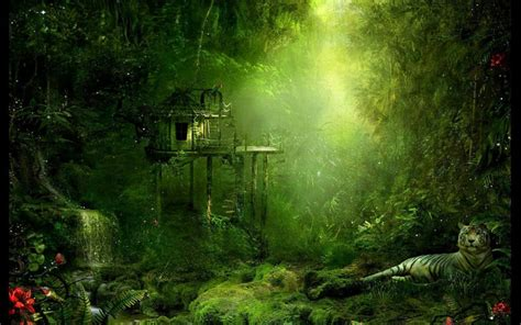 Medieval House Plans by I Love Treehouses The Jungle Tree House Wallpaper 1680x1050