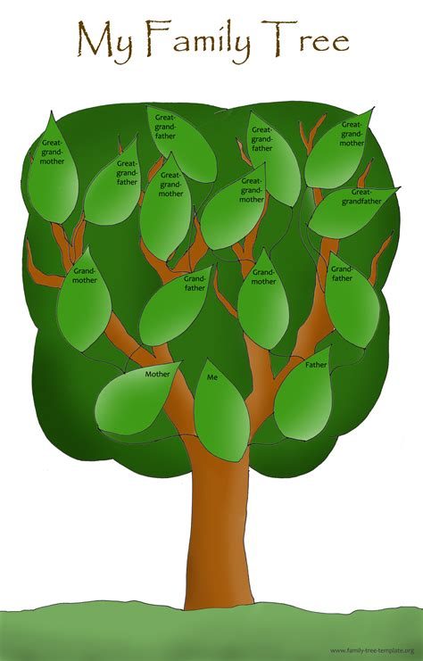 1000 images about arboles genealogicos on
