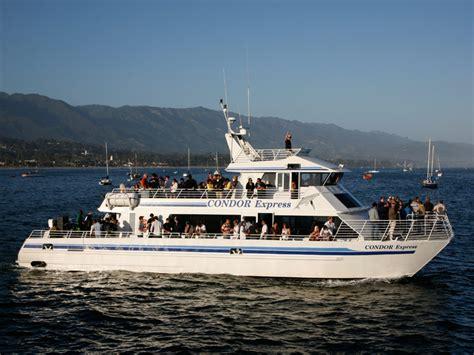 best whale in southern california santa barbara