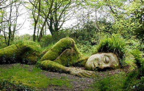 Lost Gardens Of Heligan by Where In The World Lockn Forum
