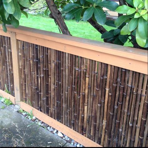 Backyard Bamboo Fencing by Cool Bamboo Fence For Inspired Garden Garden