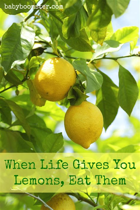 Detox Naturally With Lemons by How Lemons Help Your Detox Naturally And Their History