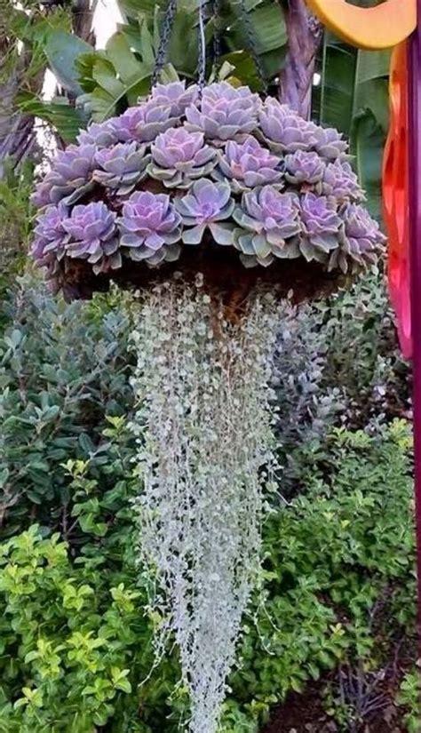 Hanging Basket Garden Inspiration Hanging Flower Baskets Hanging Flower Garden