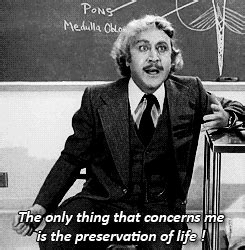 movie quotes young frankenstein young frankenstein quotes movie quotes