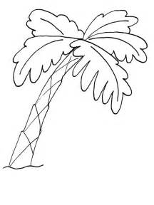palm tree coloring page palm trees coloring pages az coloring pages