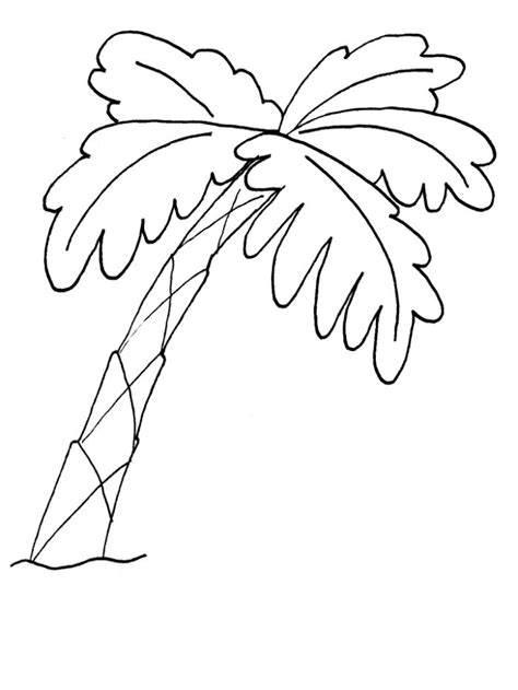 Palm Tree Pictures Free Az Coloring Pages Palm Tree Coloring Pages