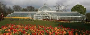 Botanic Gardens Glasgow Meet The Papyrus Crew Josceline