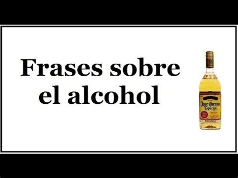 imagenes graciosas sobre drogas frases sobre el alcohol reflexiones sobre la bebida