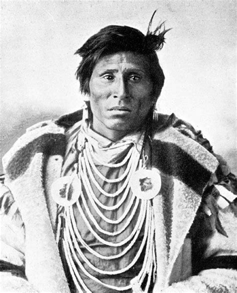 native americans on pinterest sioux native american sioux warrior native americans pinterest