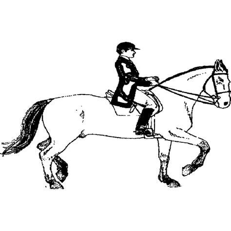 disegni cavalli facili disegni da colorare schede operative con disegni di