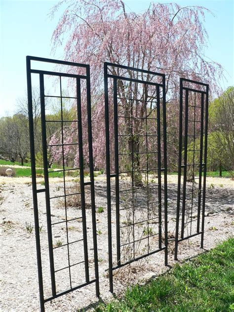 Rod Iron Trellis garden structures forum wrought iron trellises garden org