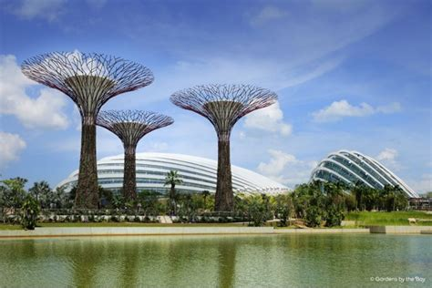 The Bay by Gardens By The Bay Bunchostel