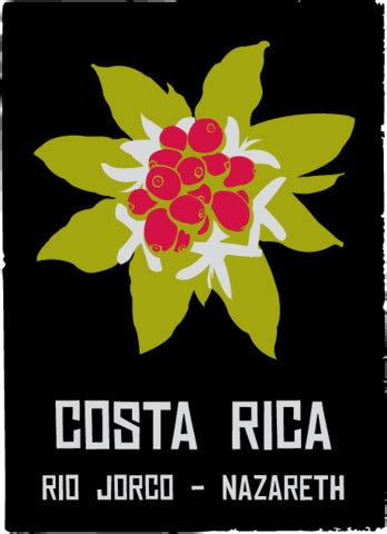 Cafe Rio Gift Card Balance - colectivo coffee roasters and cafes colelctivo coffee