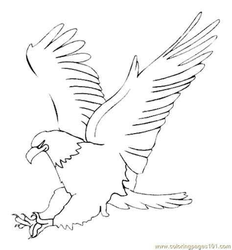 martial eagle coloring pages free printable coloring page eagle8 birds gt eagle noon quot ن