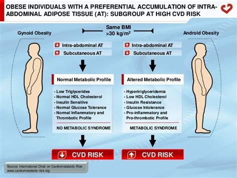 android vs gynoid the concept of cardiometabolic risk