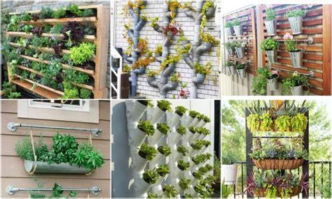 Vertikal Garten Pflanzen by Pflanzen Vertikal Anbauen Tolle Ideen F 252 R Einen