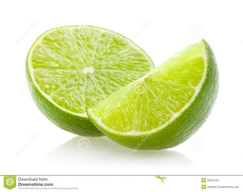 lime slice lime slices www imgkid com the image kid has it