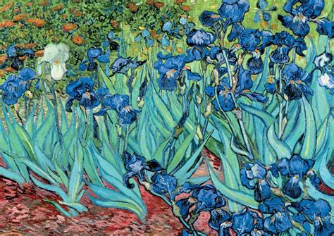 Vase Of Irises Irises By Vincent Van Gogh Www Imgkid Com The Image