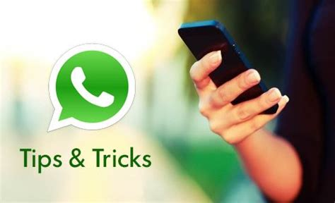 best whatsapp hacking tricks 2017 best hacking tricks 23 cool whatsapp tricks and tips you should know 2017