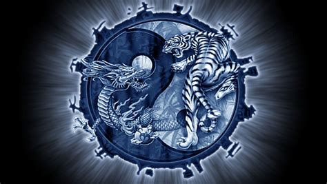 tiger tattoo hd wallpaper dragon yin yang wallpapers wallpaper cave