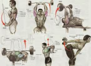 Chest Fly Bench Top 5 Day A Week Strength Training Plan Gym Workout Chart