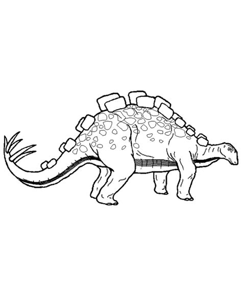 coloring pages dinosaurs stegosaurus stegosaurus coloring page coloring home